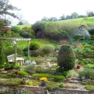 3 week sit in the Cotswolds 13th May to 3rd June