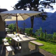 Pet/House sitter needed in Switzerland Alps