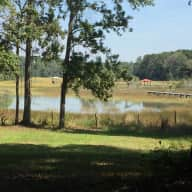 Enjoy rural southern living and farm life with spectacular marsh views-all within an easy ride of all Charleston has to offer.