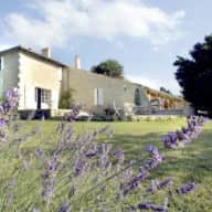 House and Dog Sitter for 2 dogs and a house near to Saint Emilion and Bordeaux