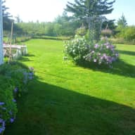 Care for two friendly senior dogs while enjoying the beautiful Annapolis valley of Nova Scotia, Canada