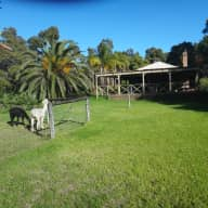 Dog Sitter required in the iconic Swan Valley . Car provided. No gardening.
