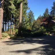 SaltSpring Island, BC, Petsitter needed for Puddles