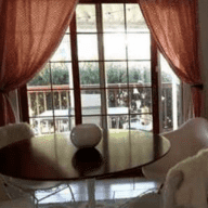 House/Pet sitter