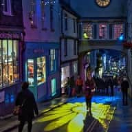 *URGENT REQUEST* Christmas in beautiful Totnes, Devon! I'm looking for a dog sitter for my lovely little shihpoo in Totnes