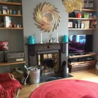 Pet sitter needed for a week in Crouch End for two cats & two pet rats