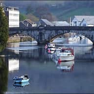 Dog Sit in Beautiful Totnes, Devon! I'm looking for a dog sitter for my lovely little old shihpoo