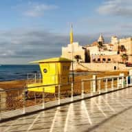 Dog Sitter Required _ Sitges Spain