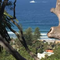 Northern Beaches House & Dog Sit