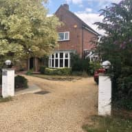 House sitter to look after and walk 2 dogs, in Newmarket, close to Cambridge