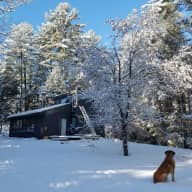 Sitter needed in Conway NH perfect location to hike and ski