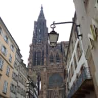 pet sitting in Strasbourg, Petite France