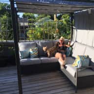 Two-Story Kitsilano Home of Cairn Terriers