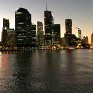 Adoring Cocker Spaniel sitter needed in Brisbane