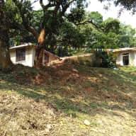 Farm house sitting