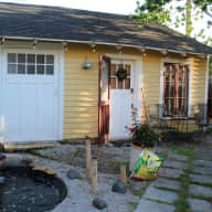 New Orleans! House and pet sit for us!