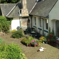 Spend a month over Christmas and New Year near Edinburgh in a beautiful house in the country with Harris the dog.