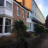 House with a labradoodle in Leamington Spa