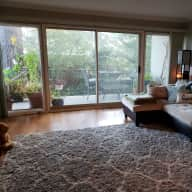 One bedroom apartment in Sausalito, CA with orange meowing fluffer