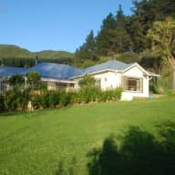 Pet sitters needed for our labrador and two cats for 3.5 weeks in Kapiti, NZ