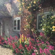 Fancy running a smallholding for a week? Pretty cottage in the Malvern Hills, with horses, dogs, sheep and chickens, needs a house sitter over New Year.