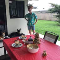 Pet sitter needed for two dogs in Cairns