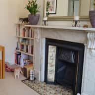 Two gorgeous and cuddly Burmese cats in London flat, for 4-weeks over Christmas 2017