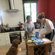 Pet Sitter for two dogs and 3 cats