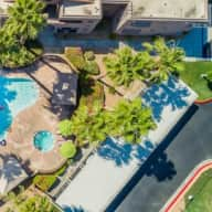 Palm Springs Pet Sitter Needed