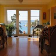 Quiet cat in quiet seaview home