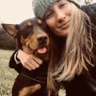 Seeking a Dog Loving House Sitter!