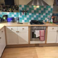 Very Cat friendly house sitter wanted in lovely area of London