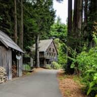 Coastal Redwoods of Northern California 5 quiet acres