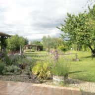 House and poultry sitter required during our 2 weeks in the UK