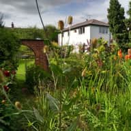 Devon Cottage SW of Exeter - 2 cats and 4 hens in residence