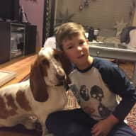 House and pets  caring sitter needed