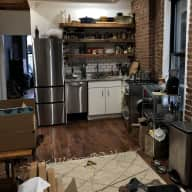 Lower East Side NYC Cat Sit