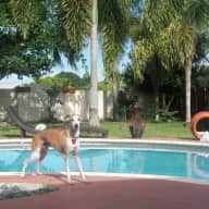 Sun, Pool, Beach, Snorkel, Jet Ski, Fishing, Florida Keys