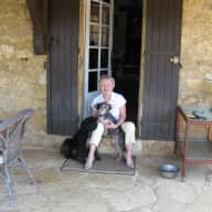 House and pet sitters for 2 small dogs and two cats in the Dordogne, France while we go on holiday.