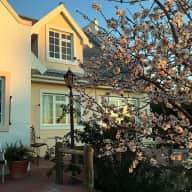 Little Olive Farm near Cape Town