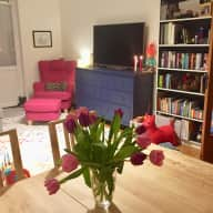 2 cats, cosy apartment in Stockholm suburbs
