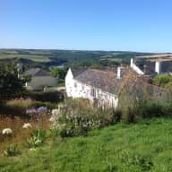 Pet and house sitting in Cornwall