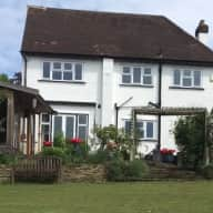 Cat and House sitter wanted in Purley, Surrey