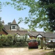 Harry and Jack live in the New Forest and are looking for caring sitters x