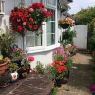 Detached, quiet seaside home with large private garden and 2 cats in sunny Sussex.
