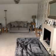 Pet/house sitting/ dog walker