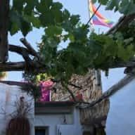 Ibiza Countryside Spain - 3 week Sitter for  Xmas 2018 & NY 2019