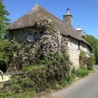 Thatched cottage on beautiful Dartmoor with one dog and chickens