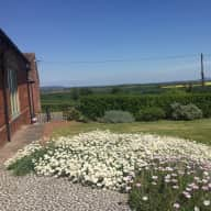 Please housesit in the beautiful Shropshire country side, looking after a friendly dog and a cat.