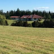 Dog-Loving House-Sitter for Beautiful Farm Homestead.